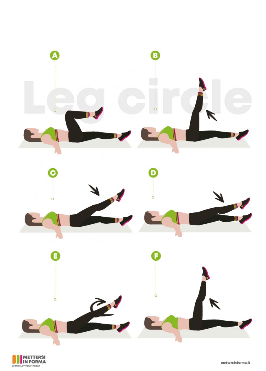 infografica leg circle
